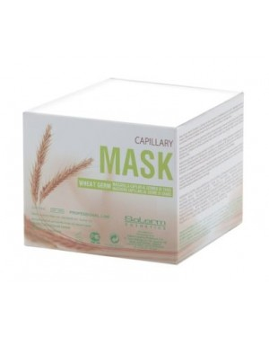 Mascarilla cabellos secos Germen de Trigo 200ml Salerm + 1 Consejo