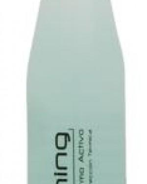 Plis spray secado Brushing 250ml Salerm + 1 Consejo